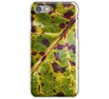 Fall Leaf iPhone Case/Skin