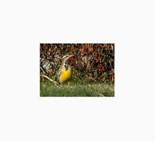 Western Meadowlark in New Hampshire! - North Hampton, NH 11-16-15 Unisex T-Shirt