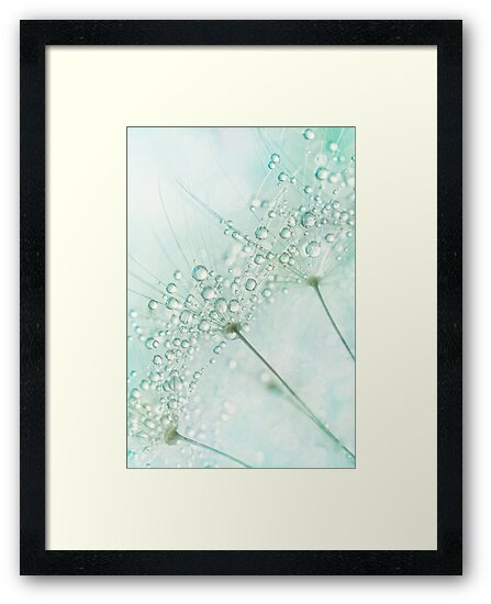 Baby Blue Sparkles by Sharon Johnstone