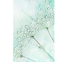 Baby Blue Sparkles Photographic Print