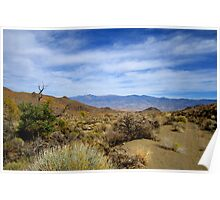 A Desert View Of The White Mountains Poster