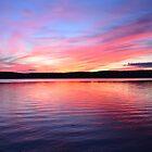 Chicaugon Lake Sunset by Michael McCann