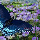 Butterfly Flight by michaelasamples
