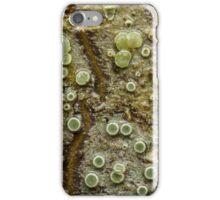 Lichen on Cascara Bark iPhone Case/Skin