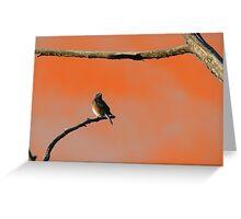 Halloween Bird Greeting Card