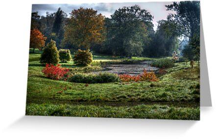Autumn Morn. by Colin Metcalf