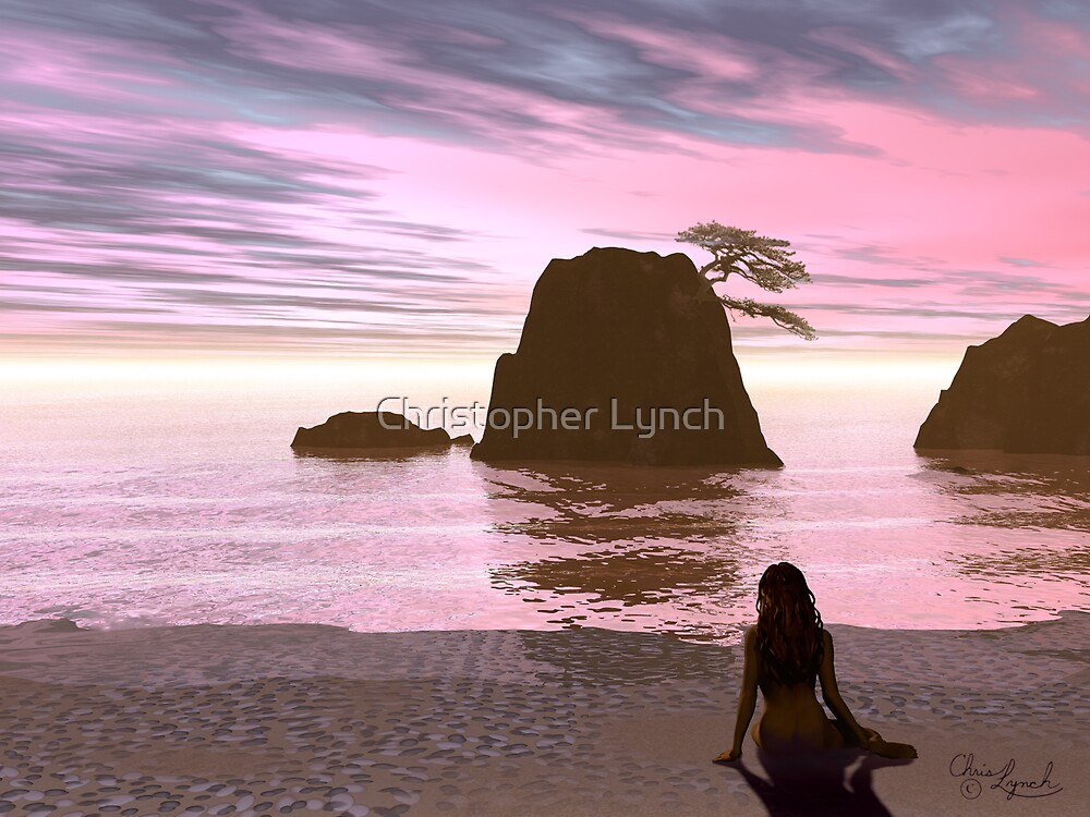 Another Sunset by Christopher Lynch