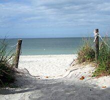 Captiva Island Beach by Patricia127