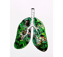 Lungs of the Planet Photographic Print