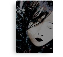 Shattered Illusions  Canvas Print
