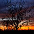 Halloween Sunset Tree 2012 by agenttomcat
