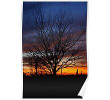 Halloween Sunset Tree 2012 Poster