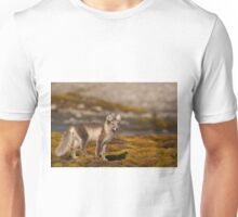 Arctic fox in tundra Unisex T-Shirt