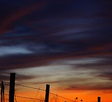 Halloween Sunset Fence 2012 by agenttomcat