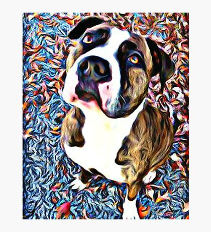 Pit Bull Rescue Beauty (2) Photographic Print