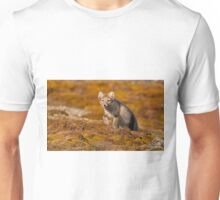 Arctic fox striding out Unisex T-Shirt