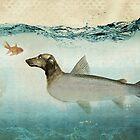 dog fish by vinpez