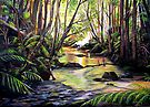 Blue Mountains Creek by Linda Callaghan