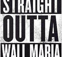Straight Outta Wall Maria by HelpMeGoAbroad