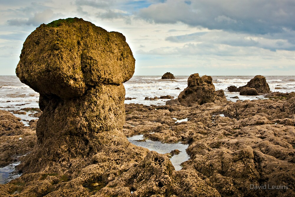 Mushroom Rock by David Lewins