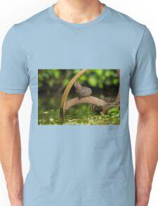 Inquisative baby Water vole Unisex T-Shirt