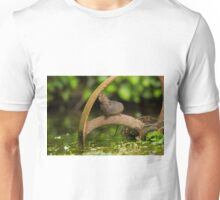 Inquisative baby Water vole Unisex T-Shirt