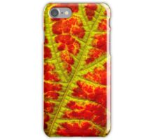 autumn leaf abstract I iPhone Case/Skin
