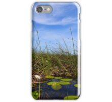 Okavango Delta iPhone Case/Skin