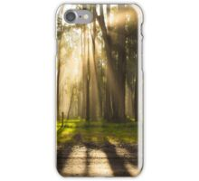 Sun through the mist iPhone Case/Skin