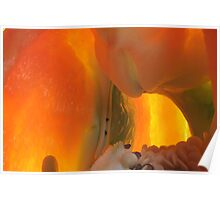 exploring underground magma spaces Poster
