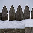 Snowy Fence by Sean Balanger