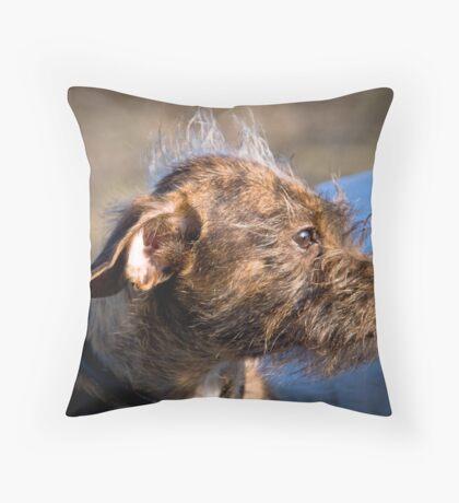 Mohawk Mutt Throw Pillow