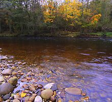 October Afternoon, on the magical River Tees by Ian Alex Blease
