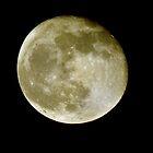 Hallow's Eve Moon  by John  Kapusta