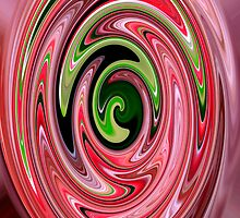 spirals by Ange Wall