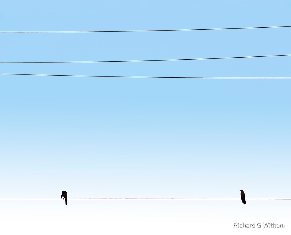 Morning Wire by Richard G Witham