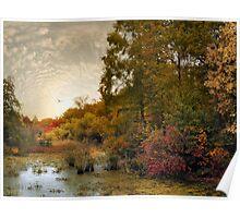 Botanical Wetlands  Poster