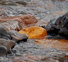 Backcountry Gold Rush by Amanda Nichols (Takacs)