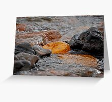 Backcountry Gold Rush Greeting Card