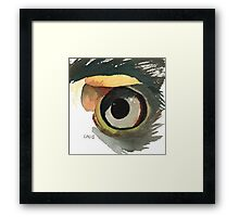 Eagle's Eye Framed Print