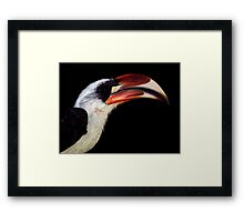 Black With A Hint Of Avian Profile Framed Print