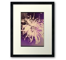 Delight In The Recognition Framed Print