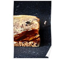 Marmite and toast Poster