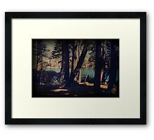 I Sit in the Shadows Framed Print