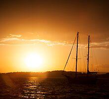 Yellow Yacht - Belmont by Daniel Rankmore