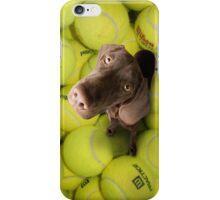 Chocolate Lab on Tennis Balls iPhone Case/Skin