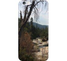 Willow Creek iPhone Case/Skin