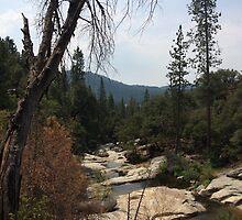 Willow Creek by Adventurersyd