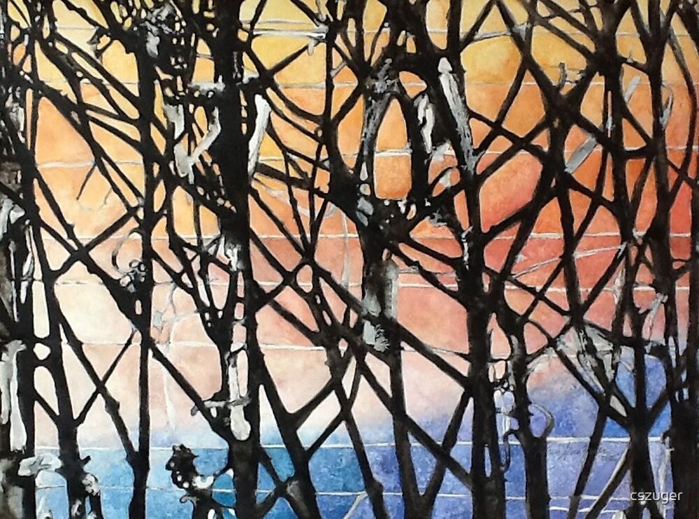 Frosty Vineyard Sunrise by cszuger