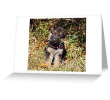 Pretty Puppy Greeting Card
